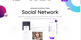 Beehive-Social-Network-WordPress-Theme-Preview-ThemeForest.png