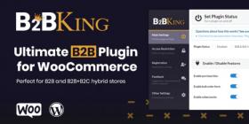 b2bking-wholesale-plugin.png